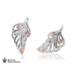 Clogau Debutante Stud Feather Earrings ~ 3SDBFE